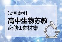 【动画素材】高中生物苏教必修1素材集