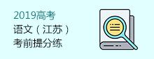 2019高考语文(江苏)考前提分练