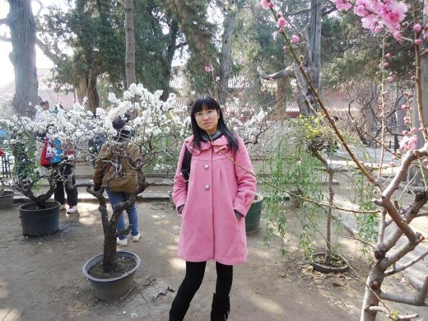 【扬州市江都区实验小学】谢圣霞