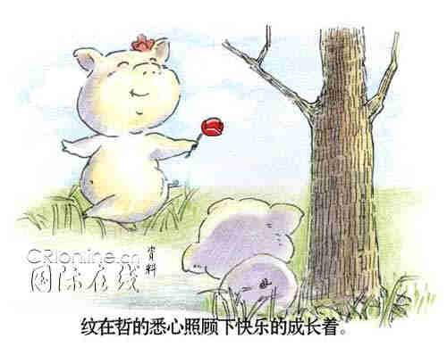 两只猪猪的刻骨爱情(组图)