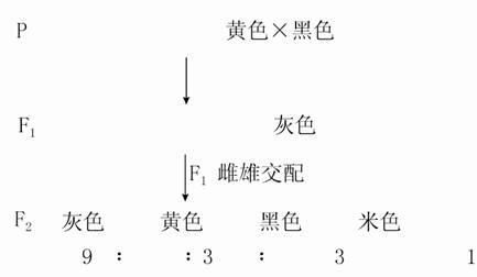 实验一电路基本定律和定理的验证